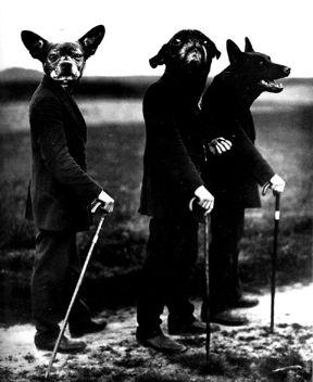 Lâchez les chiens … de Navarre !