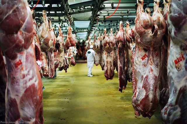 MIN Rungis viandes de boucherie veau