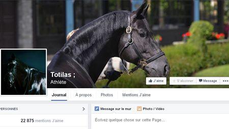 jeux cheval facebook