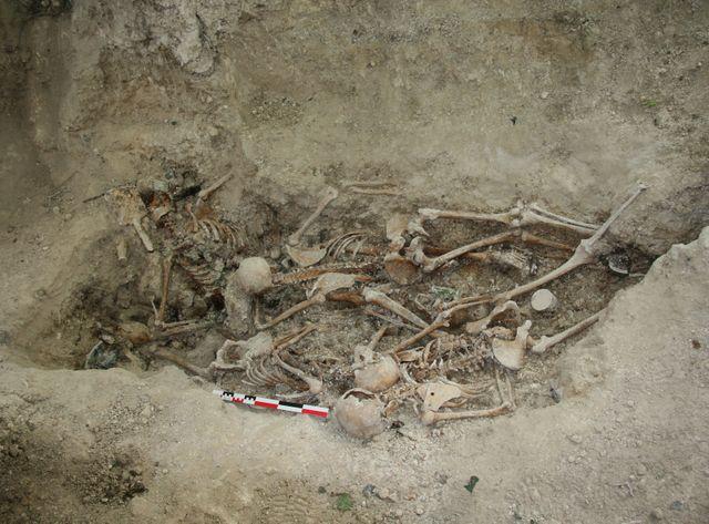 de 5 soldats allemands non identifiés relevés par les archéologues et un anthropologue