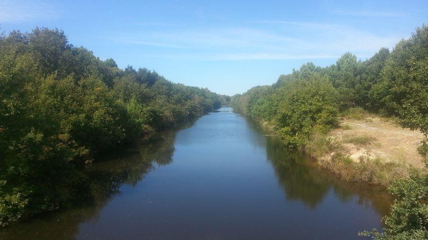 Le canal des étangs du Médoc entre le lac de Lacanau et Le Porge