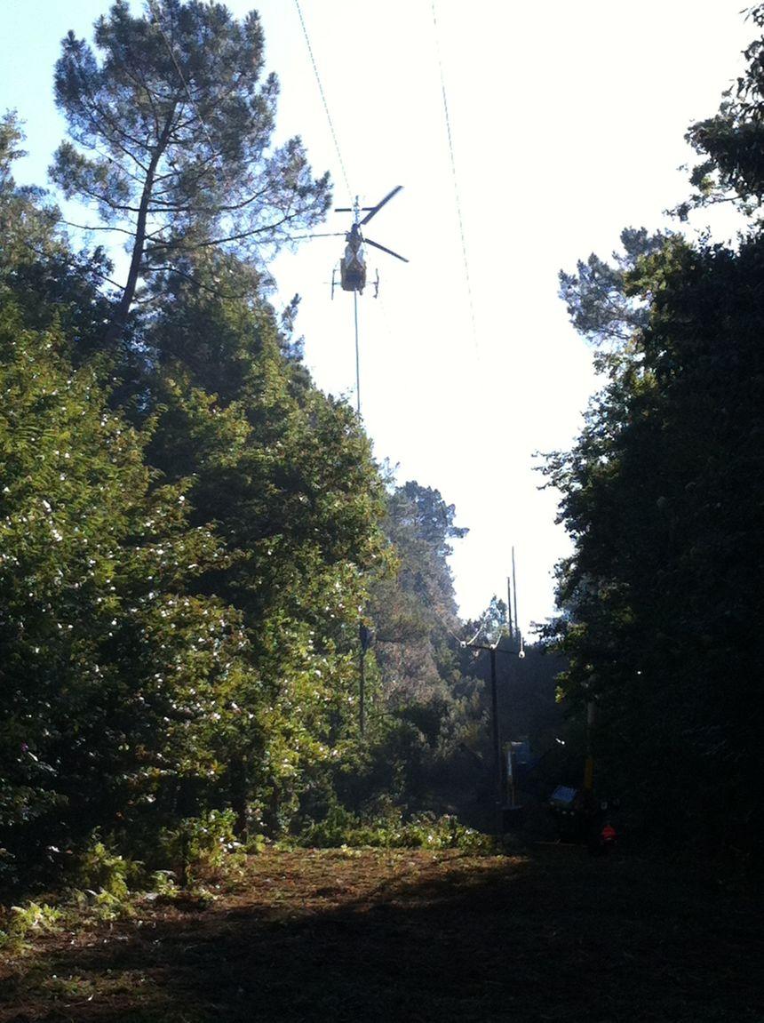 élagage par hélicopère en Dordogne 2