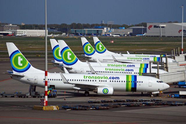 avions de la compagnie Transavia