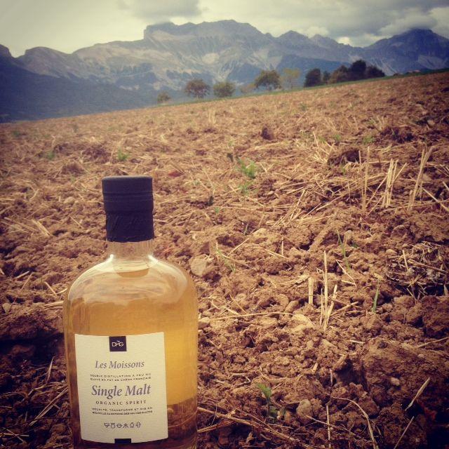 Le whisky peut-il, à la manière du vin, exprimer un terroir ?