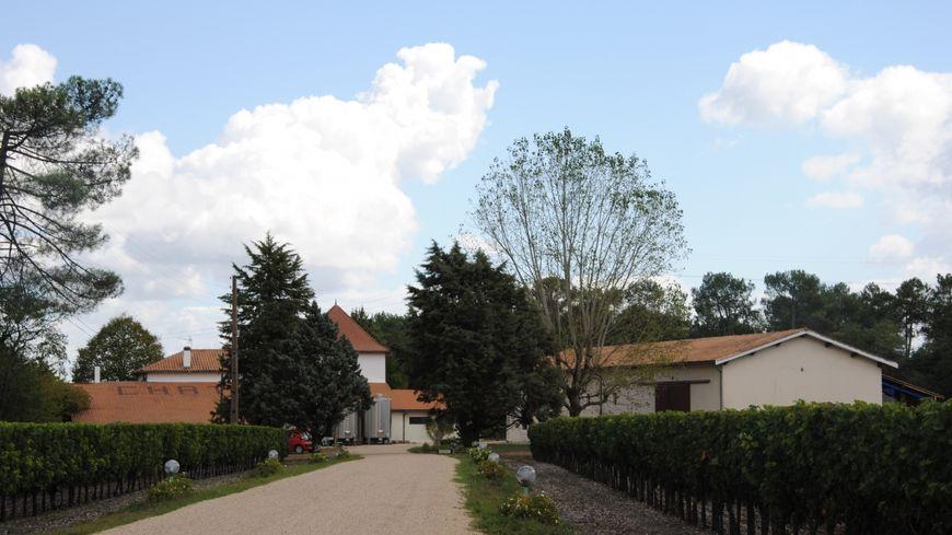 Château Méric, le bio en famille