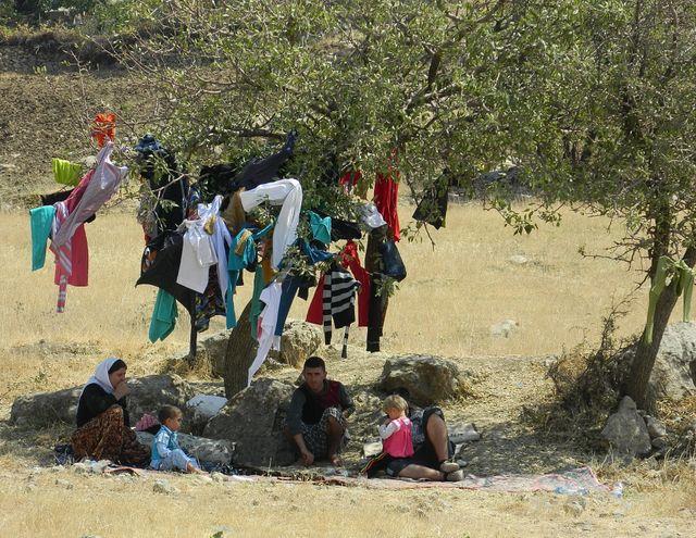 Kurdes Yézidis réfugiés en Turquie