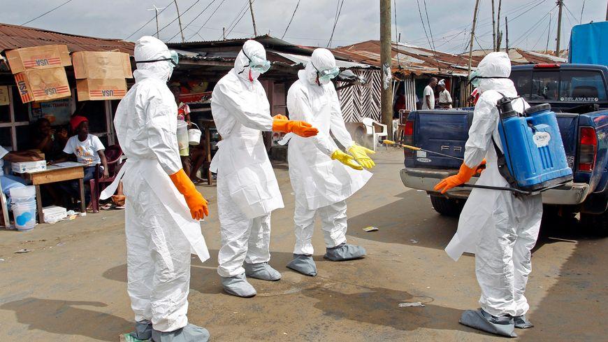 Le système de soin français éviterait une flambée épidémique en cas d'arrivée du virus Ebola sur le territoire