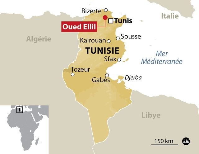 Six morts en Tunisie