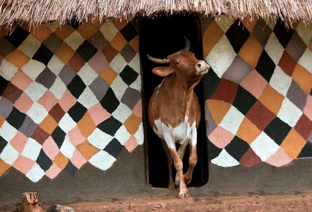 Hans Silvester maison des Bench Ethiopie