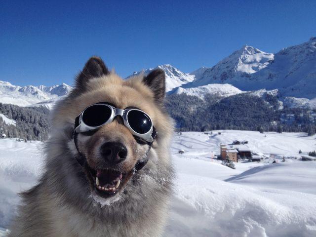 Dans une station de ski suisse, dans le canton des Grisons