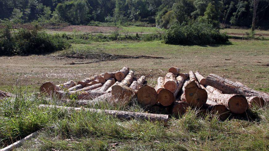 Le site du barrage de Sivens a été déboisé pour permettre la mise en place du chantier