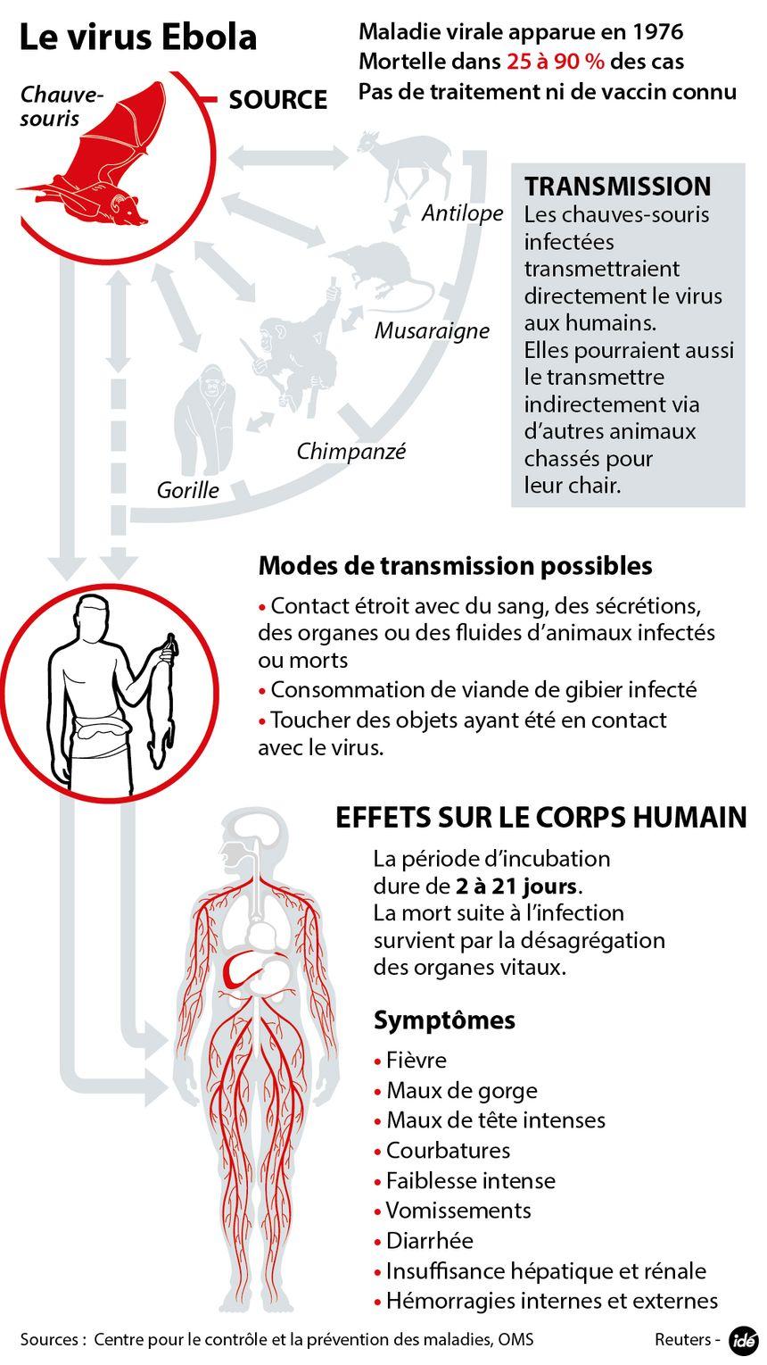 Le virus Ebola, sa transmission, ses effets