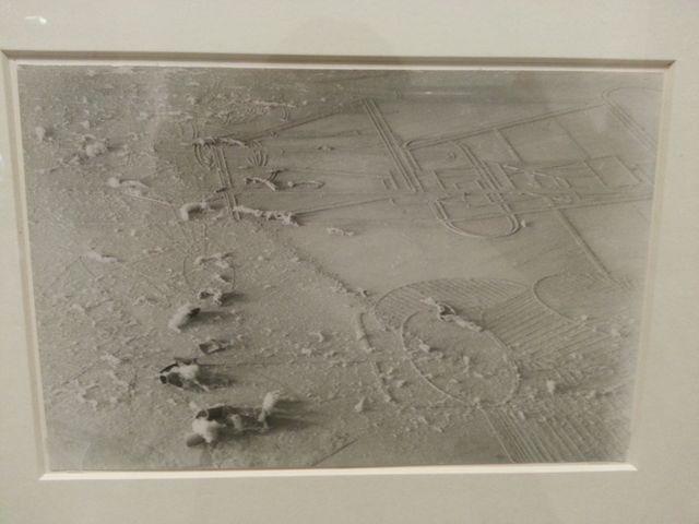 Marcel Duchamp - Elevage de poussière
