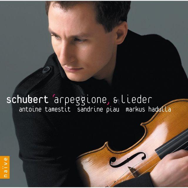 Tamestit-Schubert (2009)