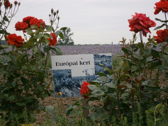 La ferme écologique a perdu ses terres mais a pu sauver son jardin botanique