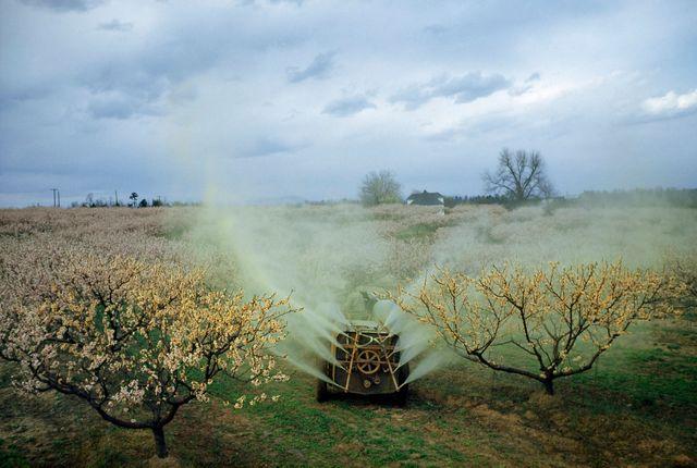 Pesticide vaporisé par un agriculteur