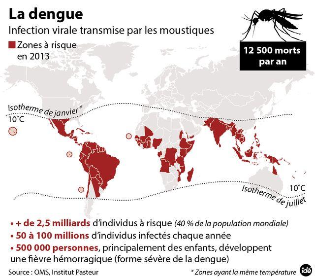 Dengue : les zones à risque