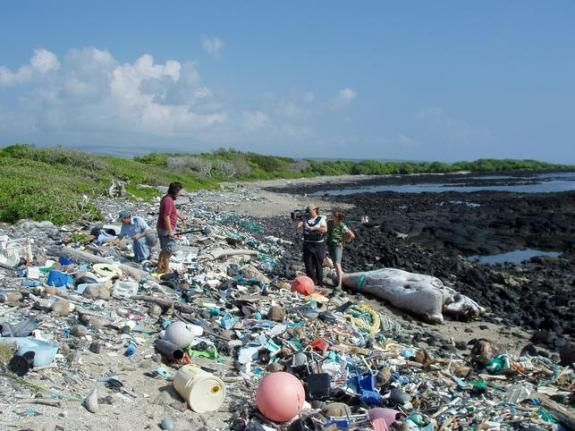 pollution plastique sur la plage de Kamilo, Hawaï