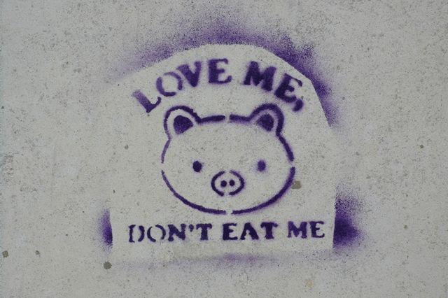 Pochoir en faveur du végétarisme en 2008