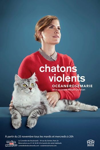 chaton violents