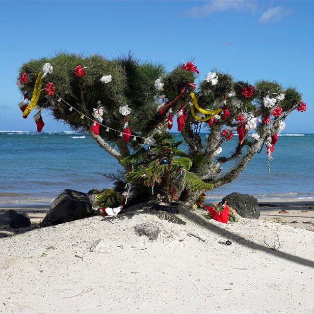 Noël à Hawaï