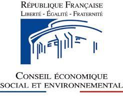 conseil économique social et environnemental - CESE