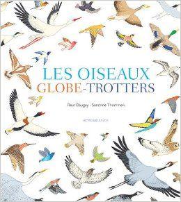 Les oiseaux globe-trotteurs