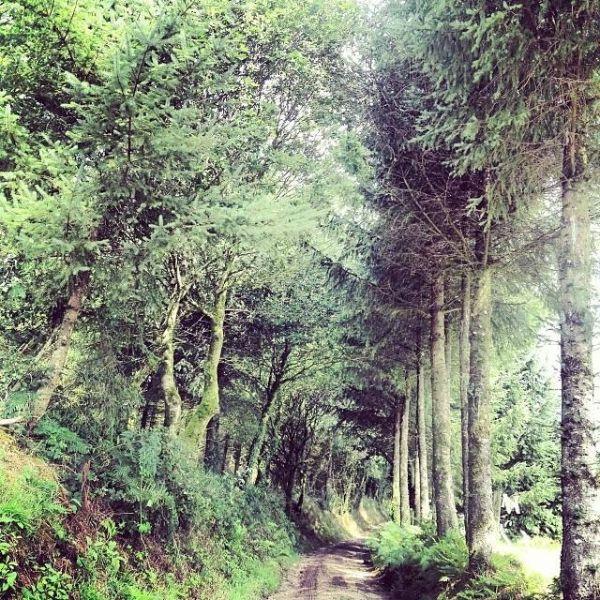 Lieu-dit de Créfuriec, environs de Trémargat