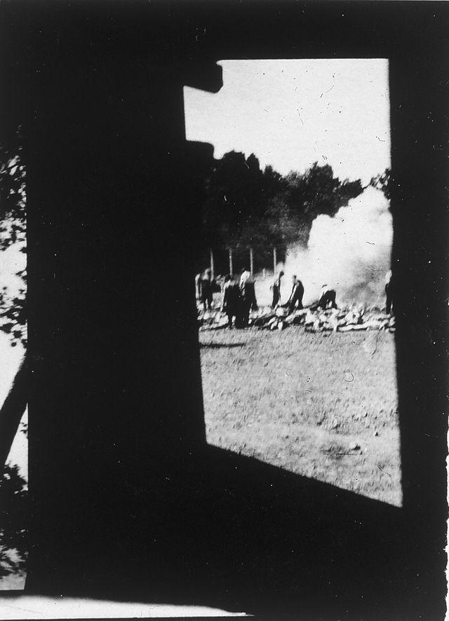 Anonyme (membre du Sonderkommando d'Auschwitz), Crémation de coprs gazés des fosses d'incinération à l'air libre, devant la cham