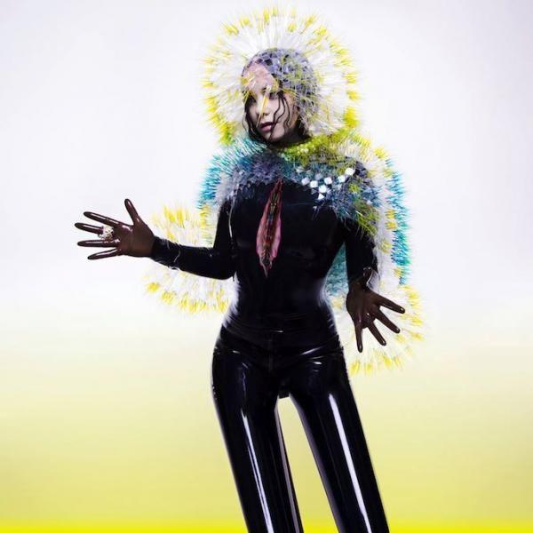 Pochette de l'album Vulnicura de Björk