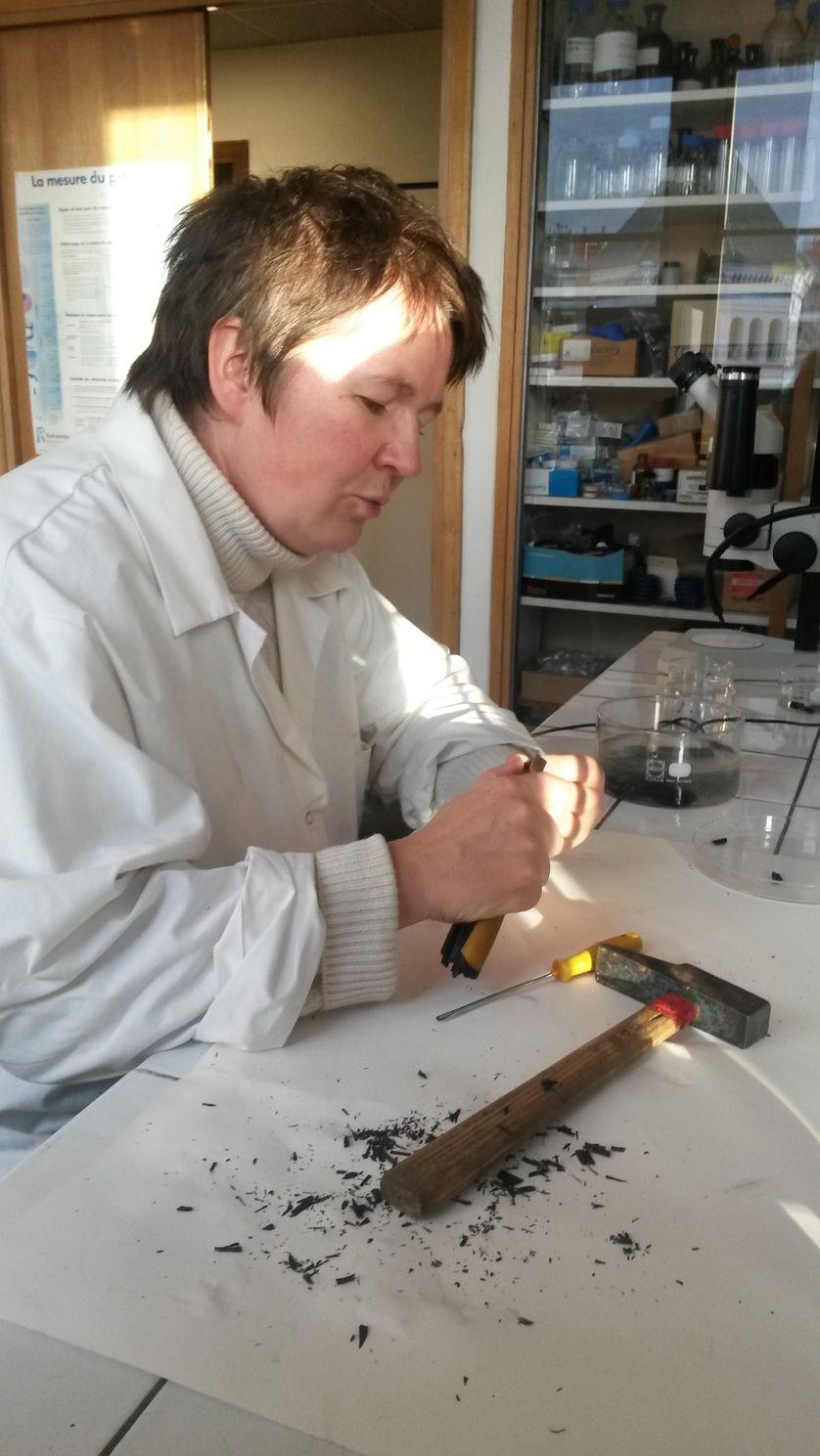 Véronique Rouchon au travail, extraction de fossiles