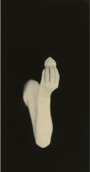la main Masao Yamamoto