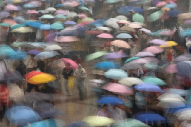Des parapluies à Pékin, en Chine.