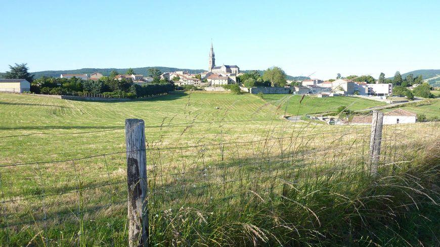 Des herbes sauvages dans des champs de Vernoux en Vivarais, Ardèche - image d'archives