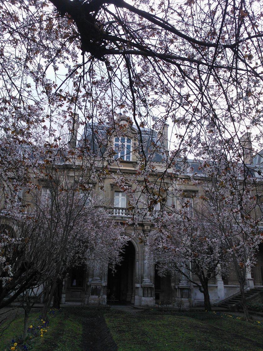 Cour du Lycée Jacques Decour