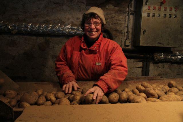 Anne trie les pommes de terre