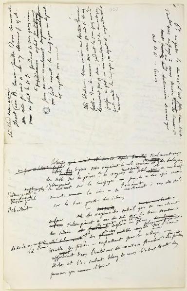 """Manuscit de """"Madame Bovary"""""""