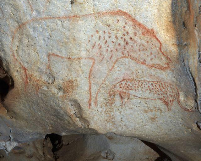 Ours et panthère dans la grotte Chauvet