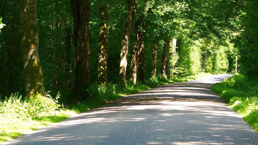 Sur la route de Klingenthal