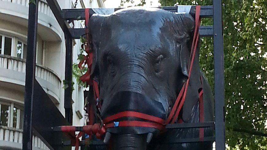 Retour du premier éléphant Chambéry 6 mai 2015