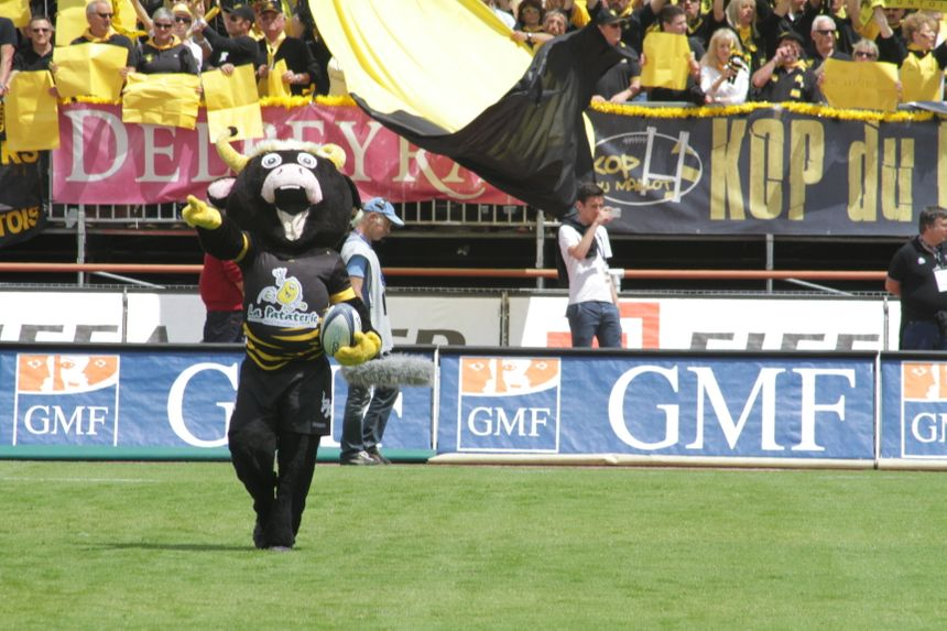Buzoca la mascotte du Stade Montois