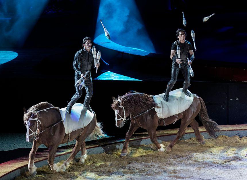 Equestriades d'Orange Alexis Gruss