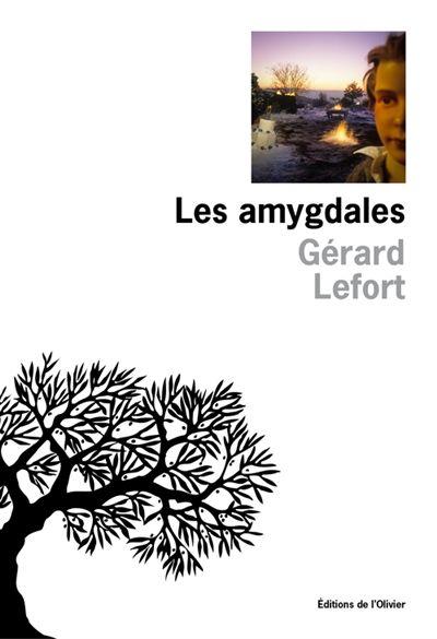 Gérard lefort-Les amygdales