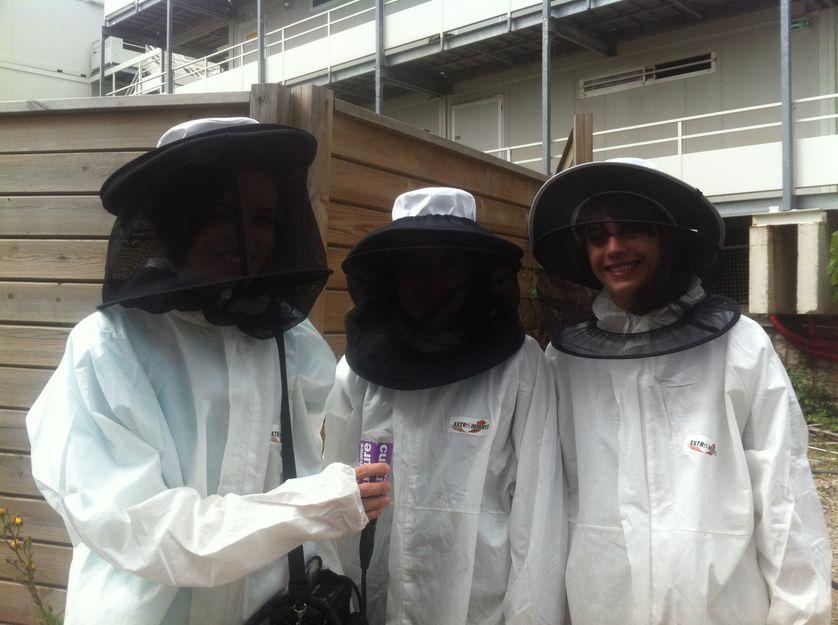 l'atelier intérieur dans les ruches