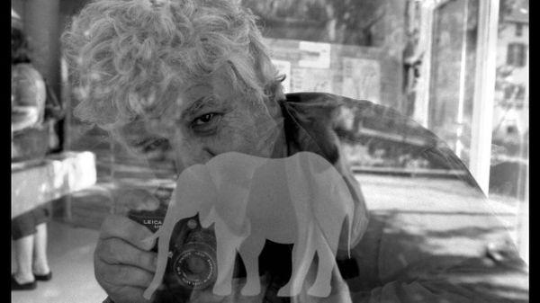 Jazz Culture : Guy Le Querrec, l'Oeil de l'Eléphant