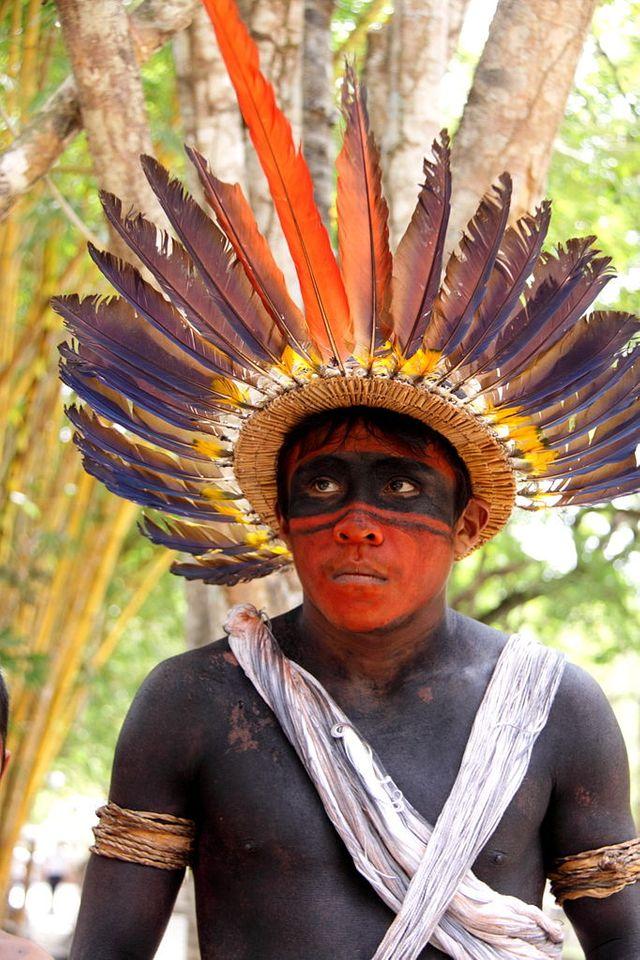 Indien du Brésil