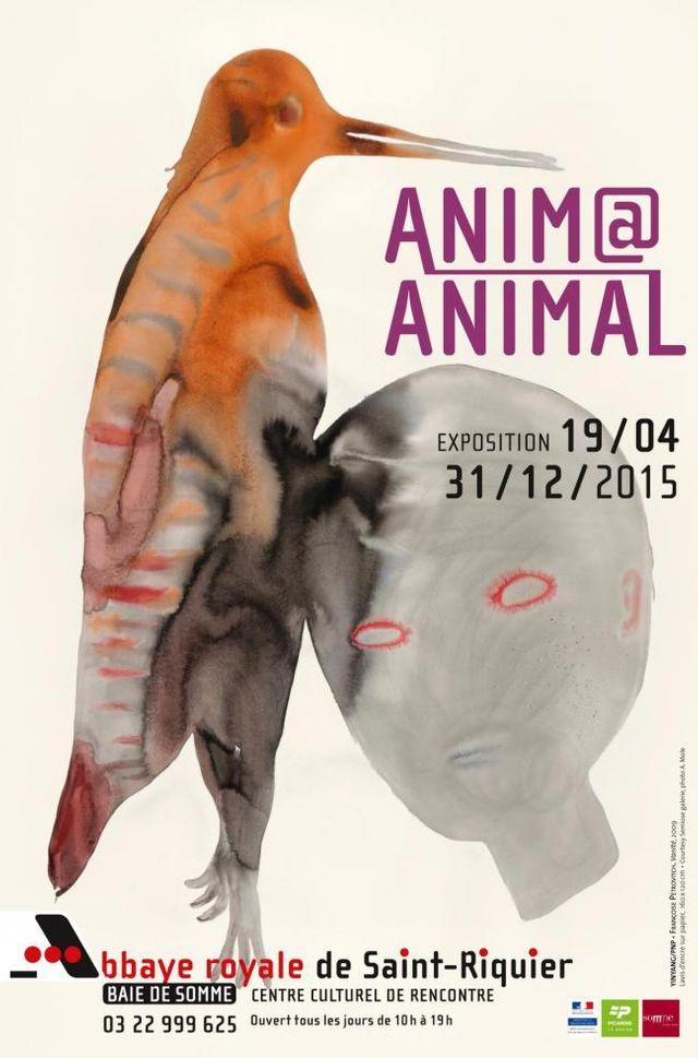 Abbaye Royale de Saint-Riquier - exposition Anima Animals