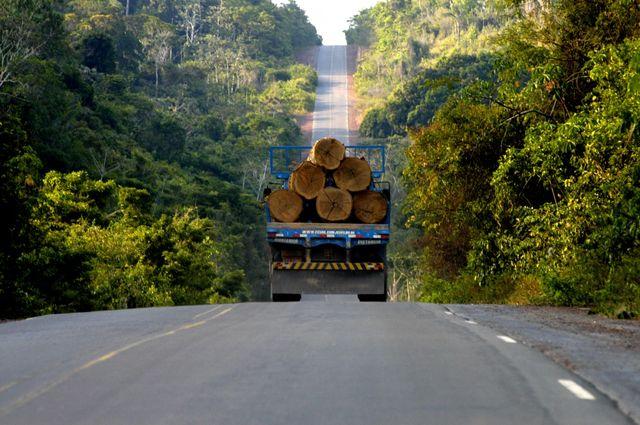 La déforestation en Amazonie brésilienne
