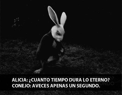 """""""Combien de temps dure l'internité ?""""demanda Alice """"À peine une seconde"""" répondit le lapin"""