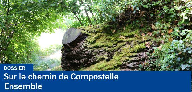 Image dossier chemin de Compostelle